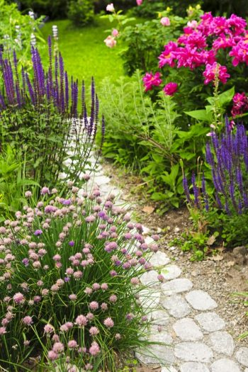 If you have a garden, but not a rock pathway, it's time to fix that right now. Today I have rock pathway ideas to inspire any gardener to make a beautiful garden just that much better. A rock pathway makes a statement that bids the beholder to follow, to more fully enjoy the garden and take time to smell the roses. See how you can add a rock pathway to your garden.