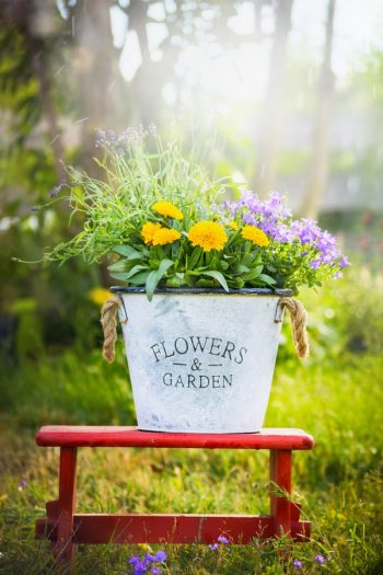 There's no denying the charm of a cottage flower garden. Did you know you can extend that charm all the way through to your front porch? I love giving a porch the look of a cottage flower garden, and you can too. Use buckets of flowers to add so charm to your porch.