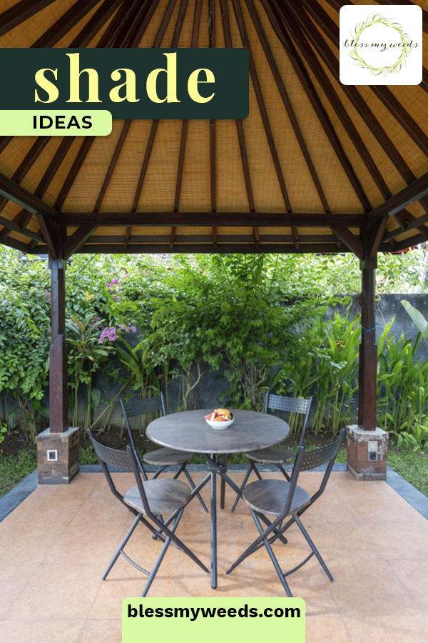 Backyard shade ideas you can trust. Find ideas for fast-growing shade trees, relaxing shade trees, and other ways to create shade to enjoy. #blessmyweedsblog #shadeideas #backyardshade
