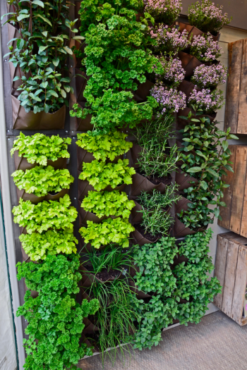 There's never a bad time to plant an herb garden, because there are so many ways to do it. I've got herb gardening ideas to help you feel more confident. Take a look!