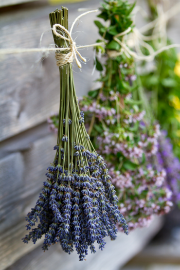 There's never a bad time to plant an herb garden, because there are so many ways to do it. I've got herb gardening ideas to help you feel more confident. You will love these herb garden ideas!
