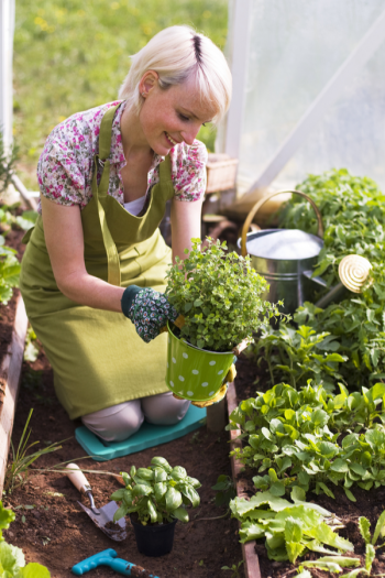 There's never a bad time to plant an herb garden, because there are so many ways to do it. I've got herb gardening ideas to help you feel more confident. Get ready to have the best herb garden ever!
