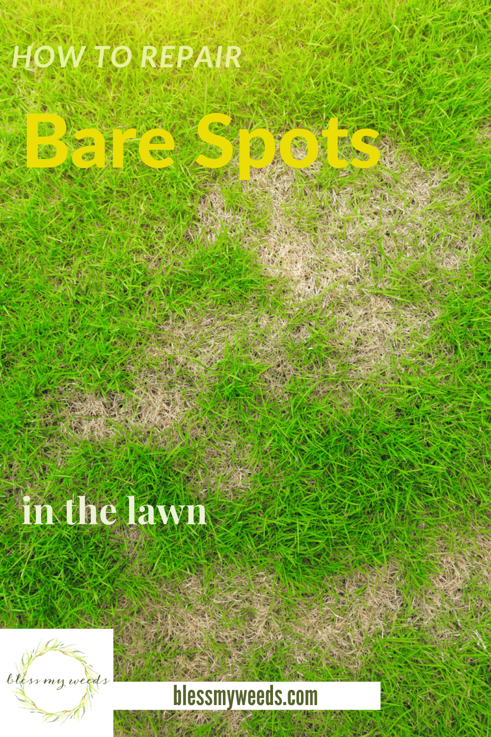 How to repair bare spots in the lawn. Know the tips to improve your lawn and stop despairing over those pesky bare spots! #blessmyweedsblog #howtorepairbarespotsinthelawn