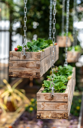 How about hanging DIY window planter boxes for indoors? These wooden planters held up by chains would look amazing in any home.