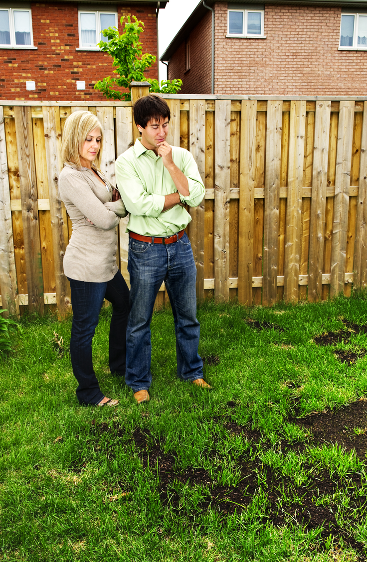 Trying to think of how to fix your lawn? Learn how to repair bare spots in the lawn. It's easier than you think to get rid of bare spots in the lawn for good!