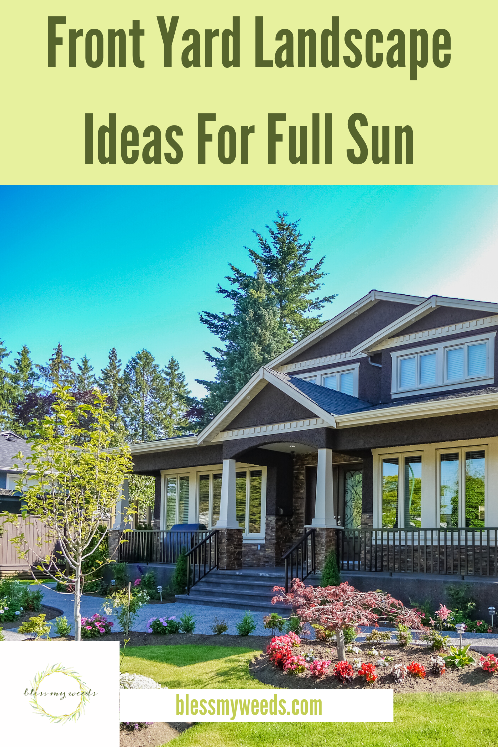 If you have a lot of sun in your yard, there are quite a few options for landscape. Read this post to learn how to make your front yard landscape look like it came from a magazine. #curbappeal #frontyardideas #landscape #blessmyweedsblog