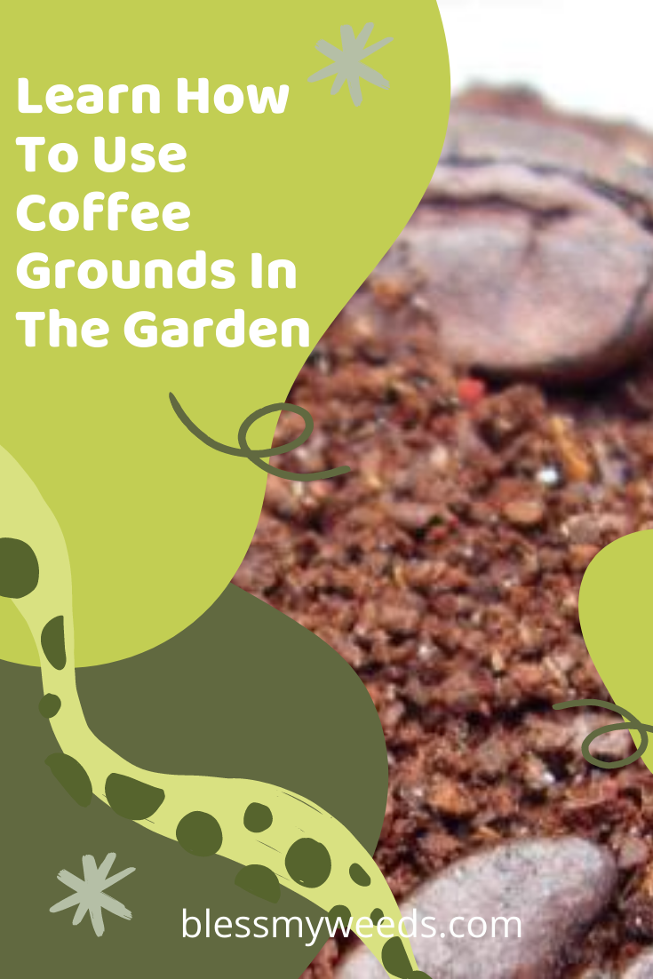 One coffee drinkers junk is another garden's treasure. Okay, maybe that's not exactly the quote, but you get the idea. Your garden could use those coffee grounds you are throwing out! Find out what, when and where.... #blessmyweedsblog #coffeegrounds #gardentips #composter