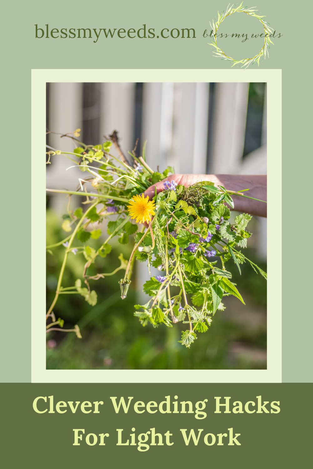 Blessmyweeds.com makes keeping healthy plants easy for anyone! Learn what to grow and how to care for it. Find the best hacks for keeping unwanted weeds out of your garden now!