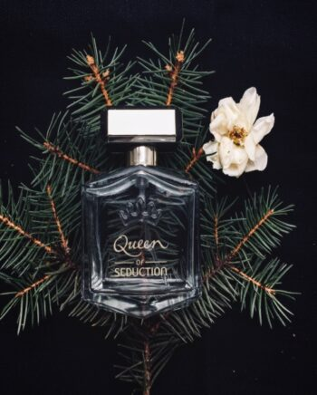 How to grow queen of the night flower